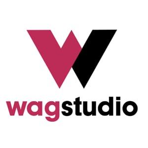 Profile picture for wagstudio