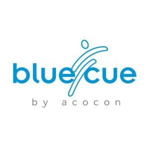 Profile picture for bluecue consulting