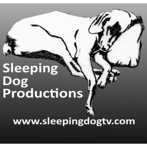 Profile picture for SleepingDogTV