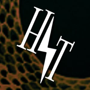Profile picture for Hogwarts' Travellers