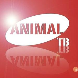 Profile picture for Animal Telebista