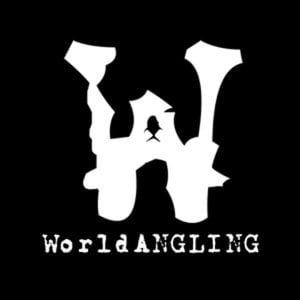 Profile picture for WorldANGLING
