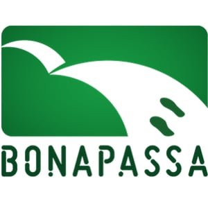 Profile picture for Bonapassa