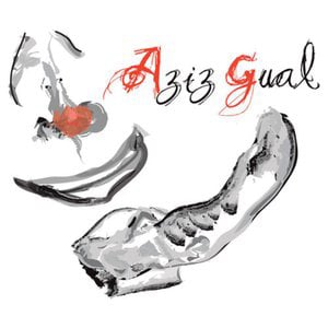 Profile picture for Aziz Gual