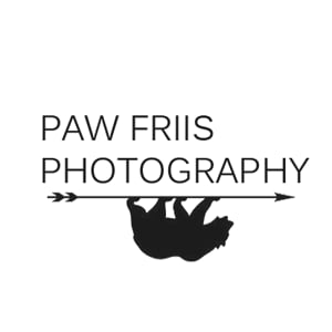 Profile picture for Paw Friis
