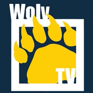Profile picture for WOLV-TV
