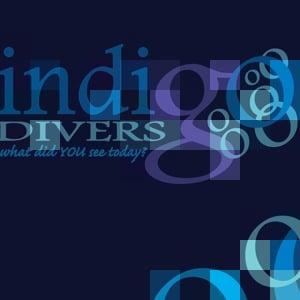 Profile picture for Indigo Divers