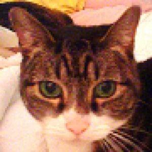 Profile picture for JoanPH