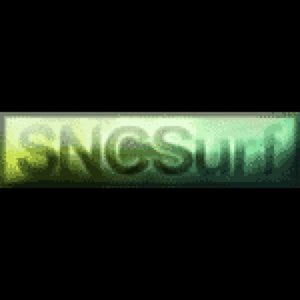 Profile picture for SNCSurf