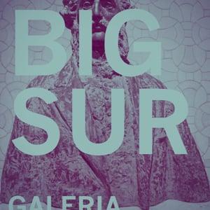 Profile picture for Big Sur®