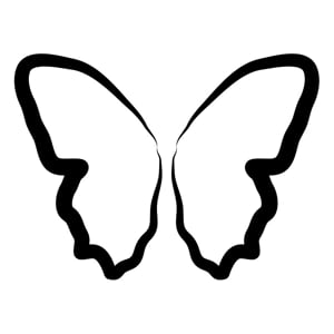 Profile picture for Butterfly Collectors