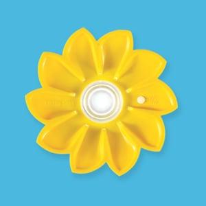 Profile picture for Little Sun
