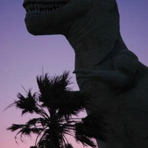 Profile picture for Trackosaurus Rex