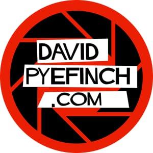 Profile picture for David  Pyefinch