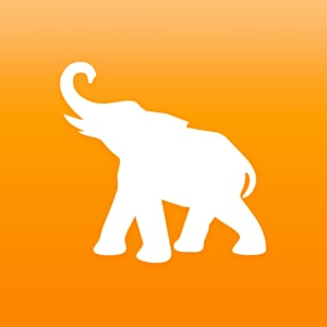Profile picture for elephorm
