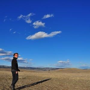 Profile picture for John Harrison