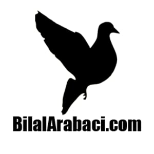 Profile picture for bilalarabaci