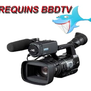 Profile picture for REQUINS BBD TV