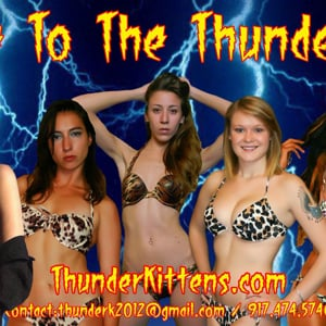 Profile picture for Diana's Thunder Kittens