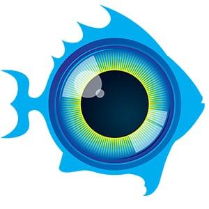 Profile picture for Fisheye Channel