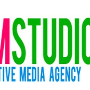 Profile picture for LMSTUDIOS