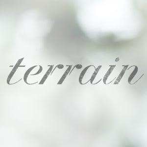 Profile picture for Terrain