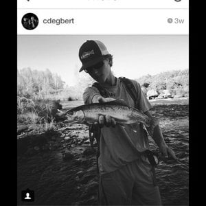 Profile picture for Flyfishing life