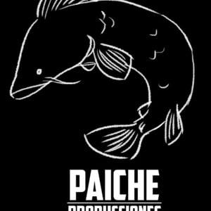 Profile picture for Paiche