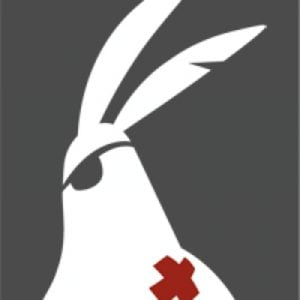 Profile picture for brave rabbit