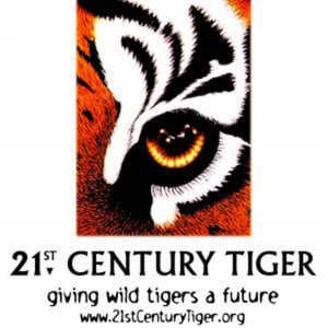 Profile picture for 21stCenturyTiger