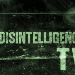 Profile picture for Disintelligence