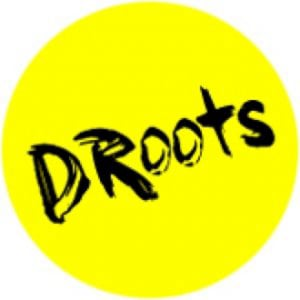 Profile picture for DRoots Theatre