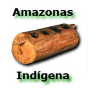 Profile picture for Amazonas Indigena