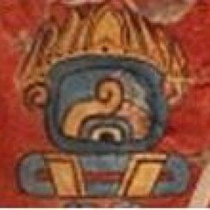 Profile picture for TONAL
