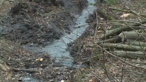 VRadvanicích a Bartovicích začala obnova rybníků pod bývalou LDN