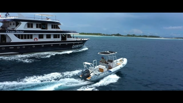 Highfield Boats PA 660 Ocean Divine