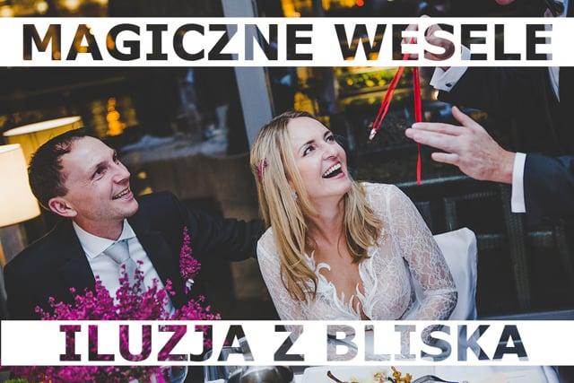 Iluzjonista na wesele - pokazy iluzji