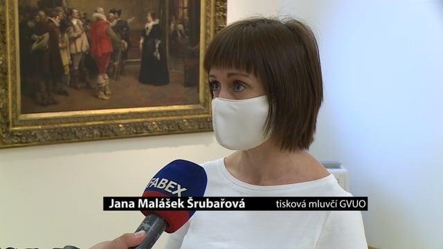 Ostravská galerie výtvarného umění pořádá on-line prohlídky