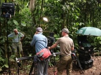 The role of a Director of Photography in documentaries