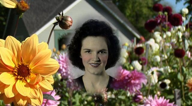 Evelyn Maxine Johnston