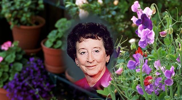 June Svoboda