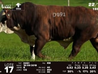 Lote 17 - D 091