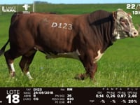 Lote 18 - D 123