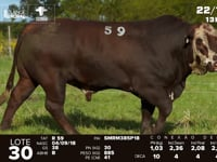 Lote 30 - R 059