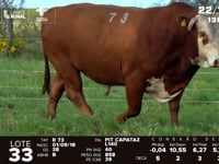 Lote 33 - R 073