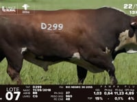 Lote 07 - D 299