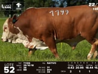 Lote 52 - T 2143