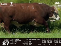 Lote 87 - R 576