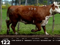 Lote 122