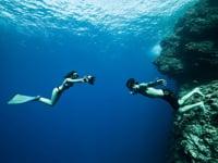 Thalassa (France 3) a suivi Guillaume Néry et Julie Gautier sur un voyage à Mayotte. Reportage de Romain Dussaulx